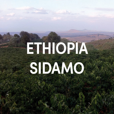 Ethiopia Sidamo Single Origin Filter