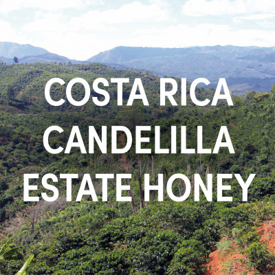 Costa Rica Candelilla Estate Honey Single Origin Filter