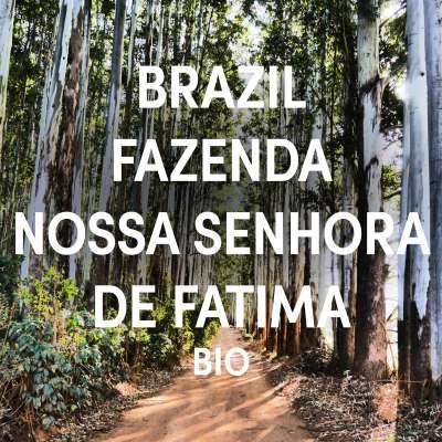Brazil Fazenda Nossa Senhora de Fatima Single Origin Filter