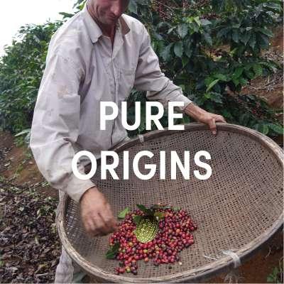 Pure Origins Bio Espresso Blend DE-ÖKO-001