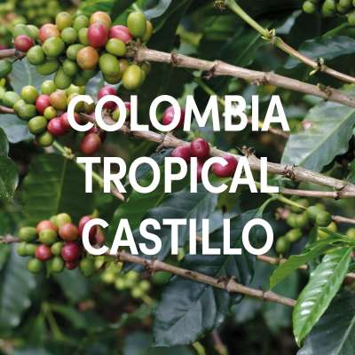 Colombia Tropical Castillo Single Origin Filter