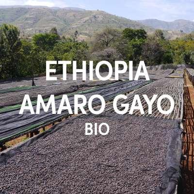 Ethiopia Amaro Gayo Bio Single Origin Filter DE-ÖKO-001