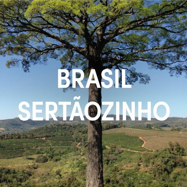 Brasil Fazenda Sertaozinho Single Origin Espresso