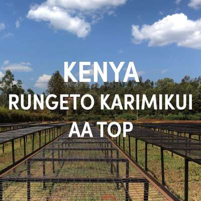 Kenya Rungeto Karimikui AA Top Single Origin Filter