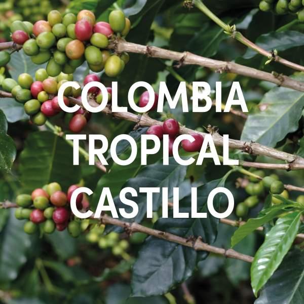 Colombia Tropical Castillo Single Origin Filter