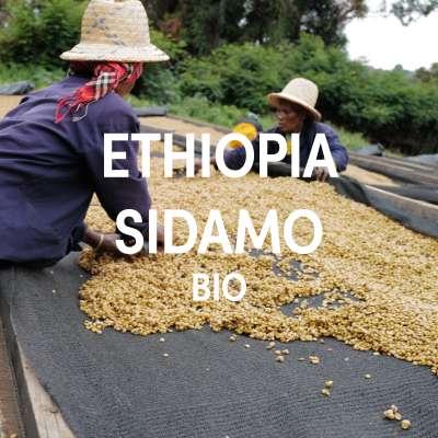 Ethiopia Sidamo BIO Single Origin Filter