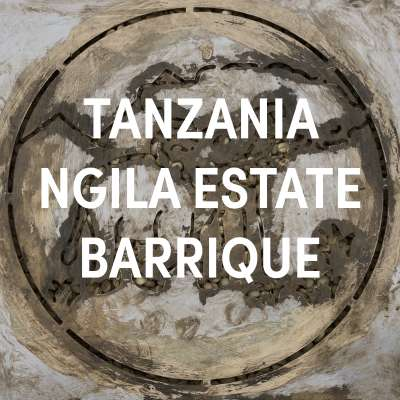 Tanzania Ngila Estate Barrique Filter Single Origin