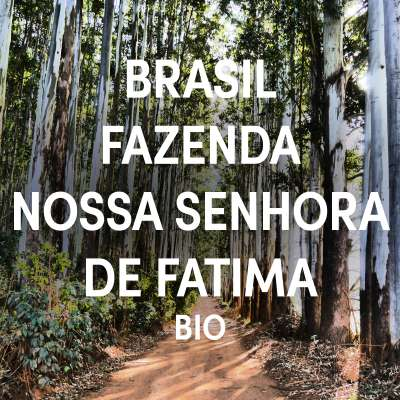 Brasil Fazenda Nossa Senhora de Fatima Single Origin Filter DE-ÖKO-001
