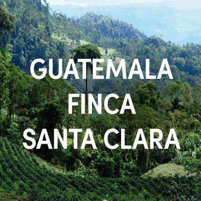 Guatemala Finca Santa Clara Single Origin Filter