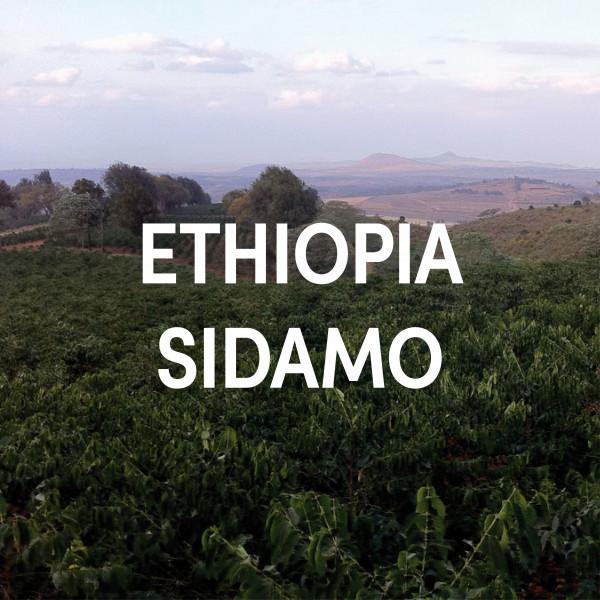 Ethiopia Sidamo Single Origin Filter