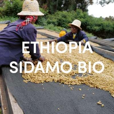 Ethiopia Sidamo Organic Single Origin Filter DE-ÖKO-001
