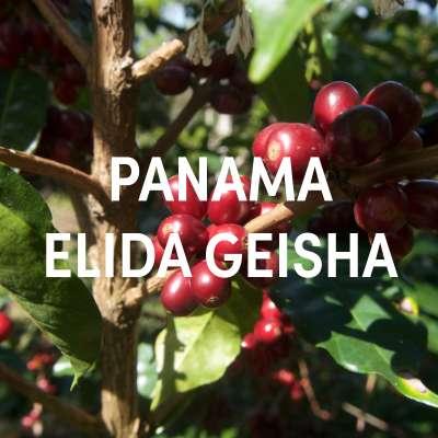Panama Elida Geisha Filter Single Origin