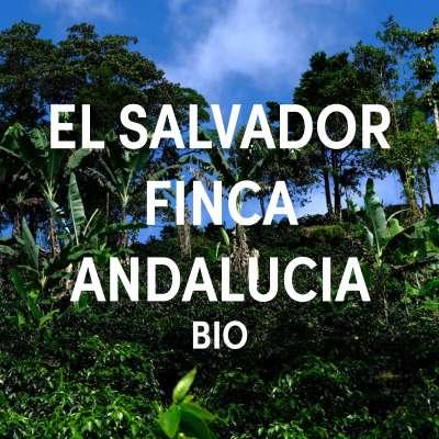 El Salvador Finca Andalucia BIO Single Origin Filter DE-ÖKO-001